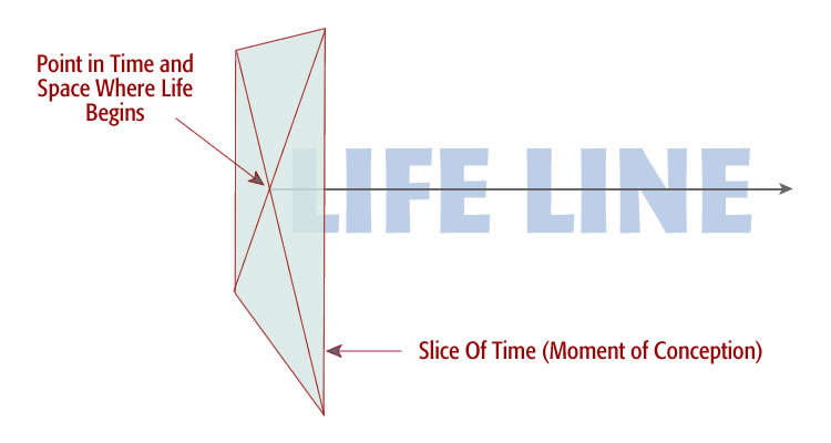 point in time and space when life begins