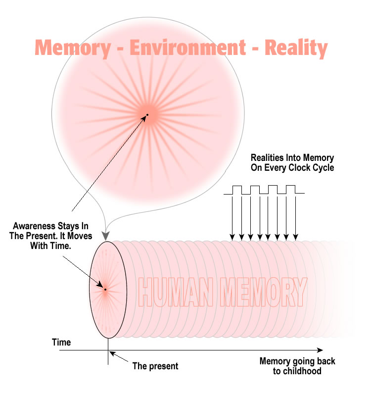 how memory absorbs reality
